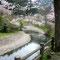 2006年4月15日、管理事務所下の桜風景