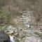 2010年4月19日、上流の大堰堤上、篠沢上流を見下ろす