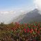 © Christoph Haas / Makalu 2010; Unterwegs über die ersten hohen Pässe Keke La, Shipton La und Tutu La ins Tal des Barun Khola.