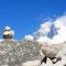 © Christoph Haas / Makalu 2010; Unterwegs in Richtung ABC. Die Gipfel von Nuptse, Lhotse und Mt. Everest aus einer ungewohnten Perspektive.