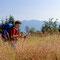 Strahlender Sonnenschein, hüfthohes Gras und die Osser-Gipfel am Horizont, so kann Silke den Ödriegel genießen.