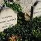 Les tombes de Vincent et Théo Van Gogh