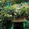 Une vue de la maison-musée de Monet