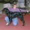 Expò di Cesena (Amatoriale) 06.11.2011