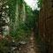 Chemin d'accès à une autre carrière. Une voie Decauville passait ici.