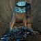 Le puits d'extraction avec son échelle. Il est rempli d'ordures et autres déchets divers.