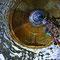 Ce puits est fermé depuis longtemps par une dalle de béton armé.