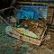 Niveleuse à sol électrique servant à préparer le terrain avant la culture des champignons.