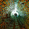 Tunnel en pierres de taille.