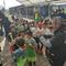 Torneo di Varedo cat.2011-2° Classificati. 16/02/2019.
