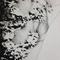"""close-up """"La passion du cri"""""""