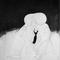 100 titres-06 - Encre de chine sur bristol / Indian ink on bristol paper - 65x50 cm.