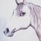 Pferd im Detail noch ohne Hintergrund für Speiselokal / Acryl, Kreide auf Holz, 200x180
