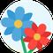 Flower arrangements - フラワーアレンジメント