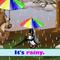 """Веселая песенка про погоду """"It's rainy""""."""