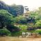 3日目の会場。花南理の庭。素晴らしい庭園。