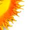 Kokos Sonne