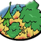 Feux de forêt