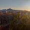 Franca - Marseille 6ème (Bouches-du-Rhône, 13 ; PACA)