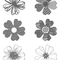Flower Shop - 130942