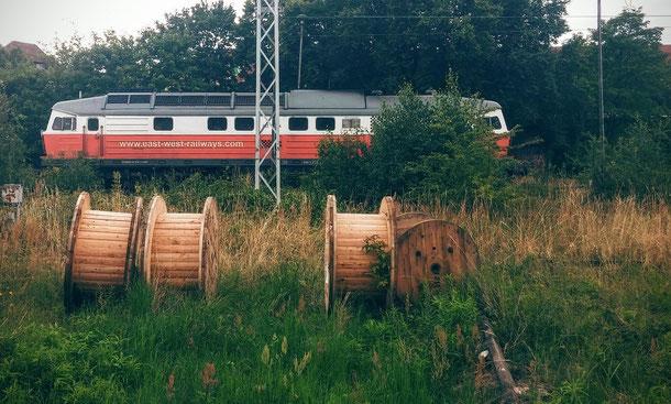 Berlin - verlassener Zug im Grünen