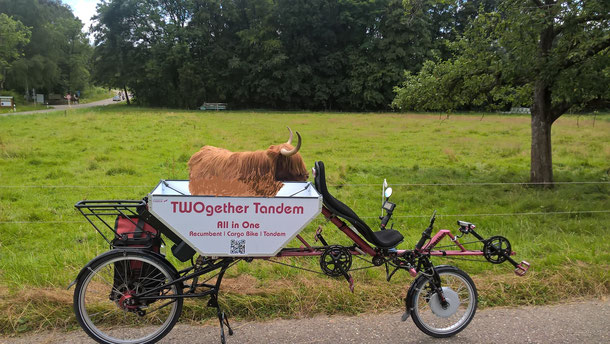 Animal Transport Bike - Finde den Fehler (What is wrong)