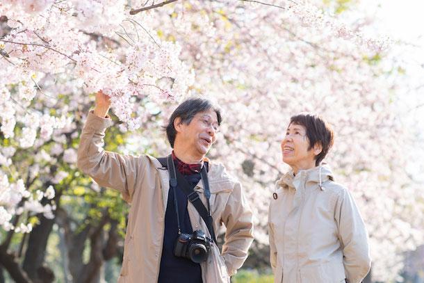 練馬区 石神井公園 桜撮影 出張撮影 家族写真 女性カメラマン