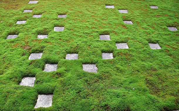 東福寺 北庭