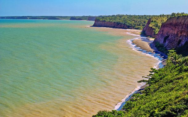 世界遺産「ディスカヴァリー・コースト大西洋岸森林保護区群(ブラジル)」、デスコブリメント(英名ディスカヴァリー)国立公園
