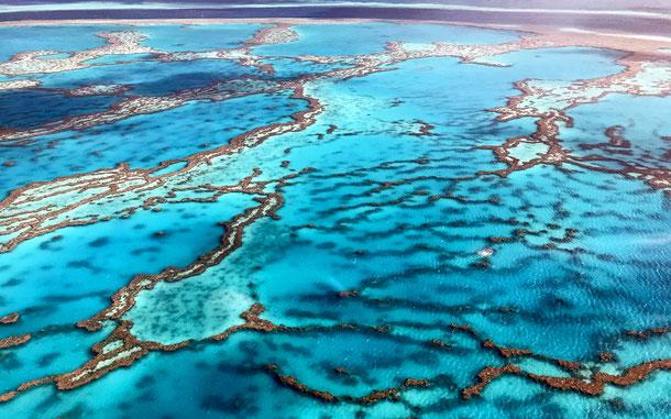 オーストラリアの世界遺産「グレートバリアリーフ」のサンゴ礁