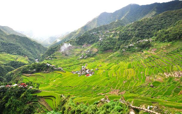 フィリピンの世界遺産「フィリピン・コルディリェーラの棚田群」のバナウエ村