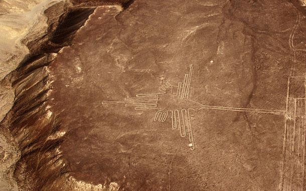 ペルーの世界遺産「ナスカとフマナ平原の地上絵」、ハチドリの地上絵