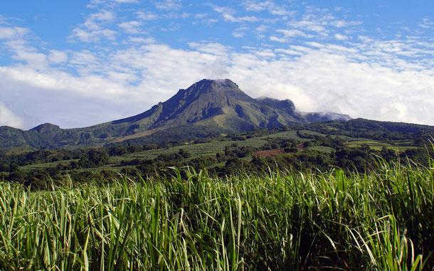 フランスの世界遺産候補地「プレー山の火山群と森林群及びマルティニーク島北部の山地」のプレー山