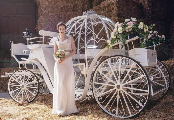 www.hochzeitspferde-weddinghorses.de