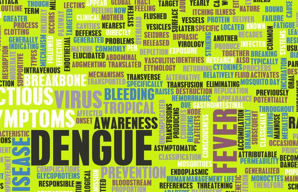 Dengue-Fieber in Vietnam: Es bestehet ein akutes Risiko und die Krankheit sollte nicht auf die leichte Schulter genommen werden.