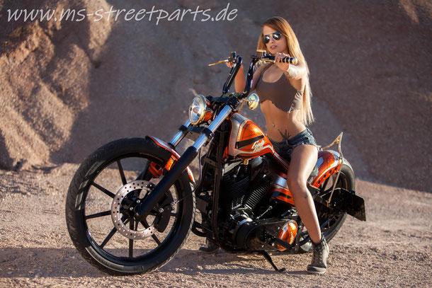 Harley Davidson Custom Bike MS StreetParts Wenzenbach Regensburg Customize Candy Glitter Sexy Girl Marcus Pfeil Custom Painting