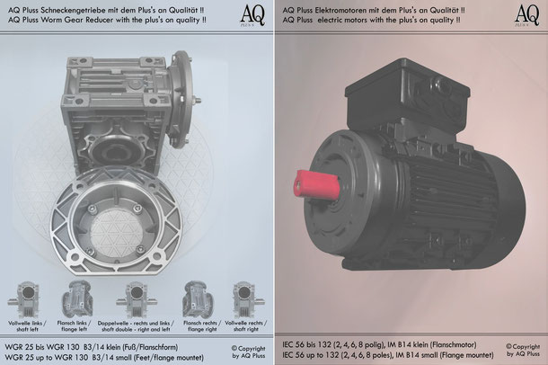 Schneckengetriebe mit EW-Motor 230 V B3/14kl