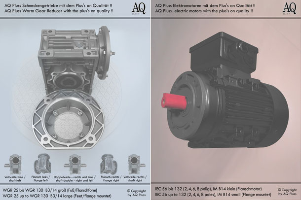 Schneckengetriebe mit EW-Motor 230 V B3/14gr