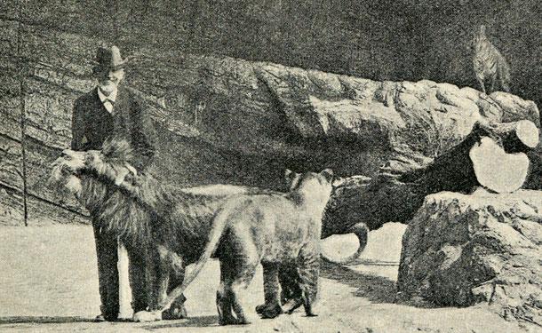 Carl Hagenbeck im Wildtiergehege - heute vor 100 Jahren ist der Hamburger Tierparkgründer gestorben. Lizenz: gemeinfrei