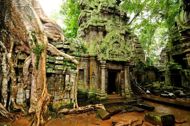 Tempelruine in Angkor Wat, Siem Reap