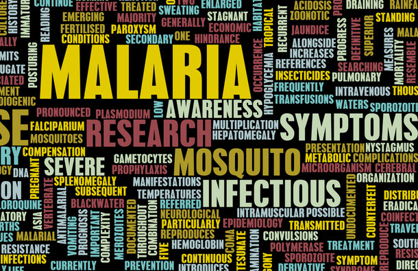 Die Tropenkrankheit Malaria in Kambodscha
