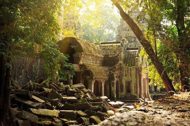 Tha Phrom Dschungeltempel