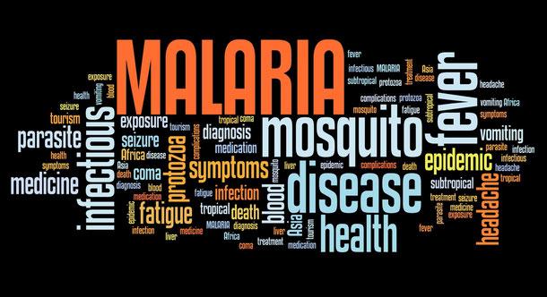 Informationen über Mückenschutz für Kambodscha Reisen