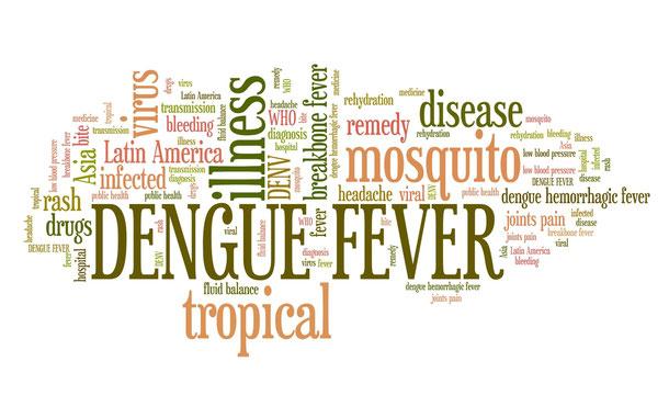 Denguefieber ist eine Gefahr im Kambodscha Urlaub und sollte sehr ernst genommen werden.
