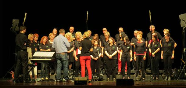 Mixed Generations bei SWR4-Chorduell 2014 in Schwäbisch Günd