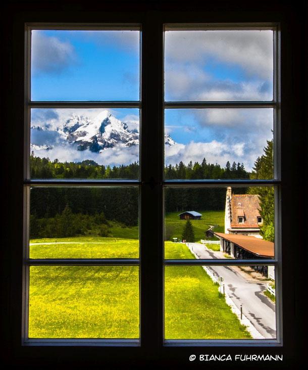 A Beautiful View - Fotorafie - (c) Bianca Fuhrmann - www.bianca-fahrmann-art.com   #bianca_fuhrmann_art