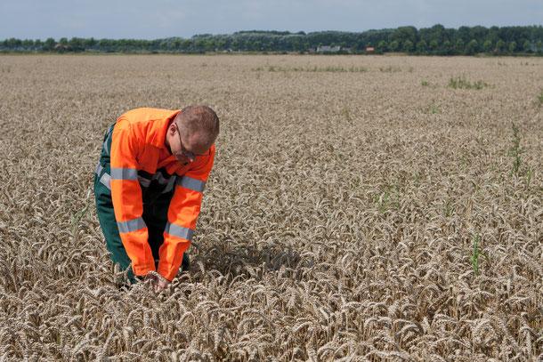 Pacht of erfpacht de website van vansabbenrentmeesters nl for Huur boerderij pachten