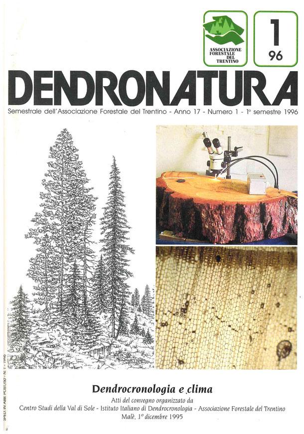 Foto di copertina: disegni e immagini - Cattedra di Tecnologia del legno - Università della Tuscia