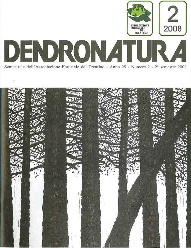 Foto di copertina (Nicola Eccher): particolare di un'opera di Albino Rossi (2008)