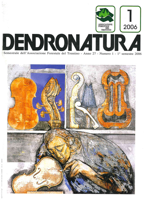 Foto copertina (Luca Pedrotti): un'opera Bruno Degasperi